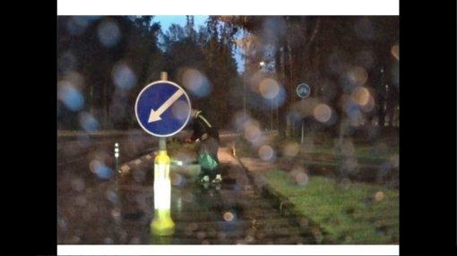 Elektrėnuose policija pričiupo iš viešųjų miesto erdvių gėles vogusią moterį