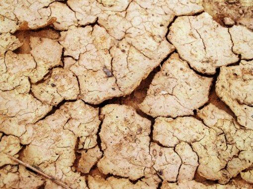 Specialistai: Lietuvoje – vis dar hidrologinė sausra