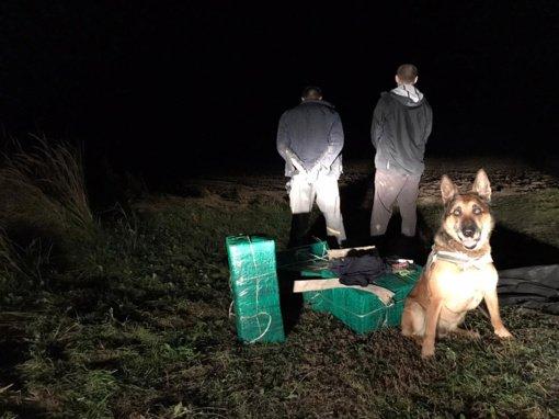 Šakių rajone cigarečių nešikus sučiupti padėjo belgų aviganis Džinas