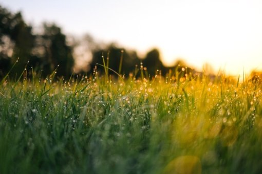 Šeštadienį – paskutinis įspūdingos šilumos pasispardymas