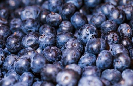 Rudens karalienės slyvos - skanios, maistingos, įvairiai panaudojamos