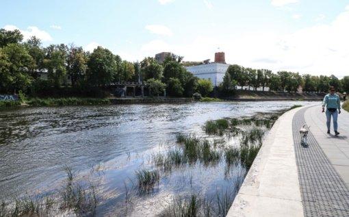 Hidrologė: sausros nenutrauktų net ir kelių savaičių nepertraukiamas lietus