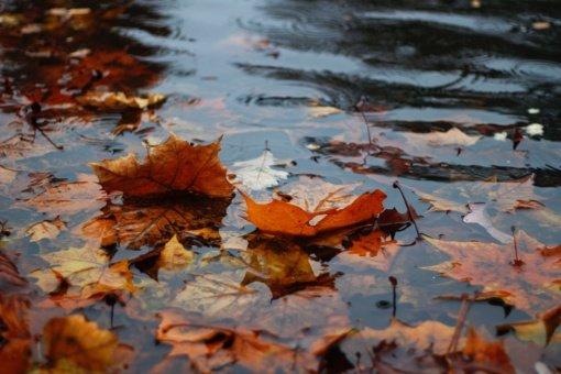 Orai: po lietaus – šaltesnių orų įsiveržimas