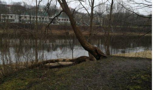 Kaunas ieško, kas sutvarkys Neries krantinės parką