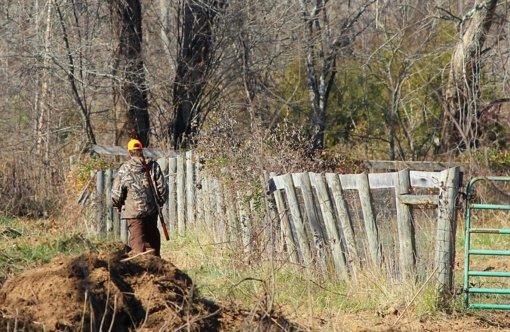 Prasidėjus medžioklės sezonui saugomos teritorijos virsta poligonais: lankytojai įspėjami atsargiau elgtis pažintiniuose takuose