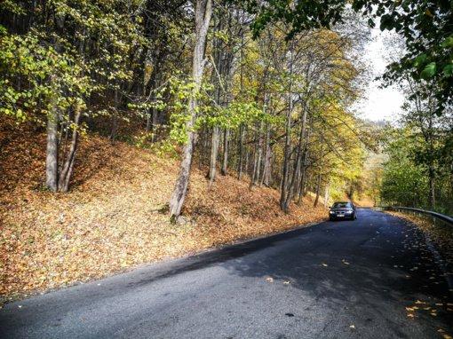 Eismo sąlygos: keliai daugiausia – drėgni, Pakruojo rajone – rūkas