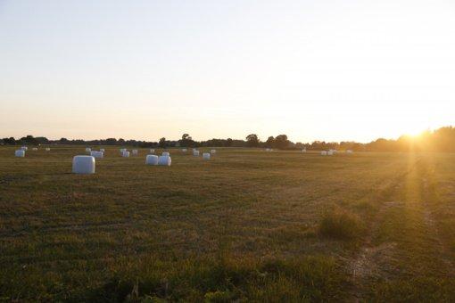 Lietuvos ūkininkai: valstybės paramos iš principo taip ir negavome, trūksta informacijos