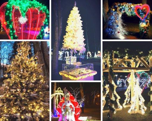 Druskininkai kviečia sukurti Kalėdų pasaką ir dalyvauti Kalėdinių eglučių konkurse