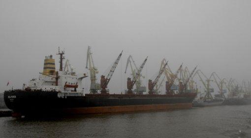 Uosto direkcija: teršalų, patekusių į Kuršių marias, kilmė kol kas neaiški