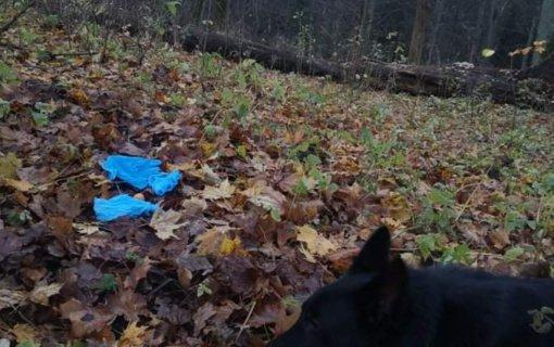Tarnybinis policijos šuo surado į krūmus išmestas narkotines medžiagas