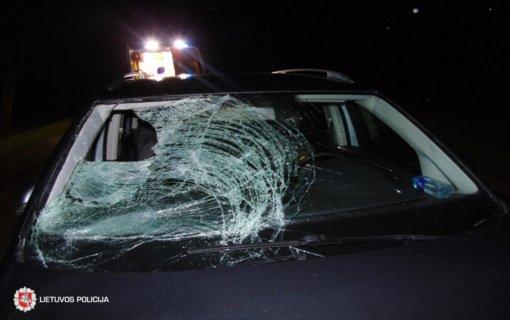 Raseinių rajone automobilis susidūrė su briedžiu, nukentėjo 3 žmonės