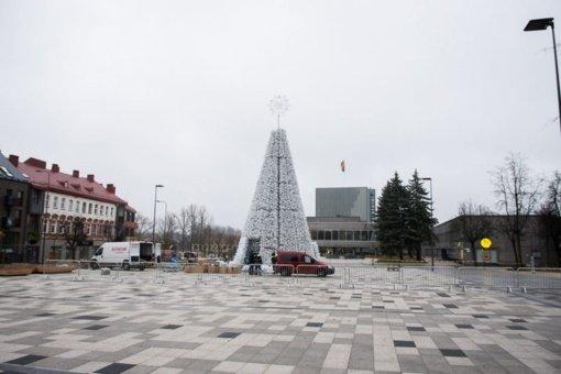 Šiais metais panevėžiečius džiugins balta Kalėdų eglė