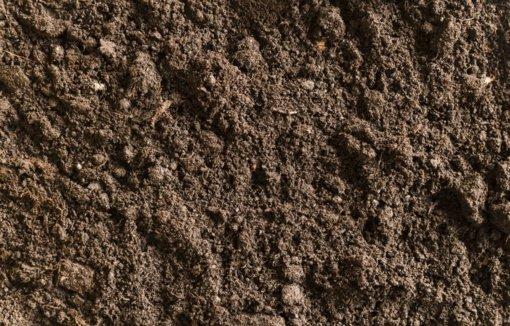 Ištirtos mineralinio azoto atsargos dirvožemyje