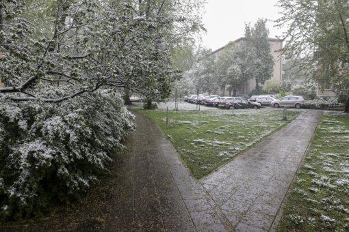 Eismo sąlygos: rytų Lietuvoje yra slidžių ruožų