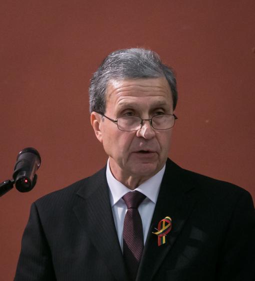 V. Sinkevičius: parlamentarų izoliavimo tvarka Konstitucijai neprieštarauja