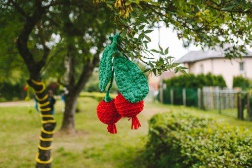 Ežerėlis pasipuoš bendruomenės kurtomis spanguolėmis