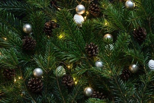 Eglės įžiebimu Kauno rajono bendruomenė pirmoji žengia į šviesų Kalėdų laukimo metą