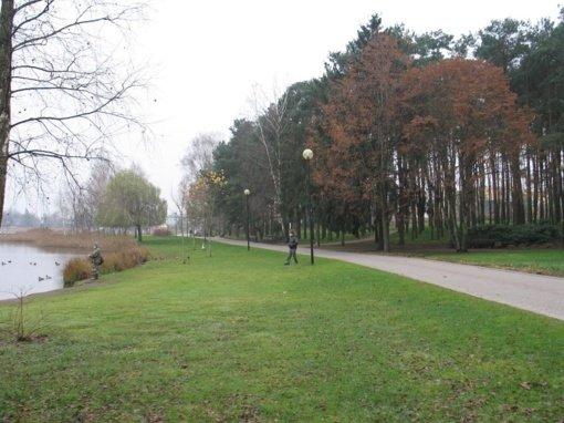 Dauniškio parke iš medžių iškelti 167 kovų lizdai