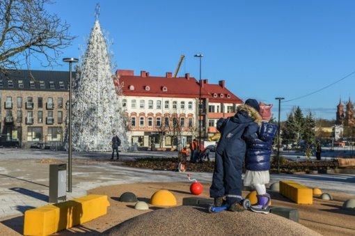 Jau rytoj bus įžiebta Panevėžio miesto kalėdinė eglė