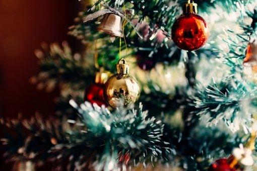 Ką rinksimės šv. Kalėdoms: tikras, dirbtines, o gal originalias kalėdines eglutes?