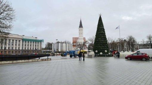 Šiauliuose kalėdinė eglė sužibs paslapčia