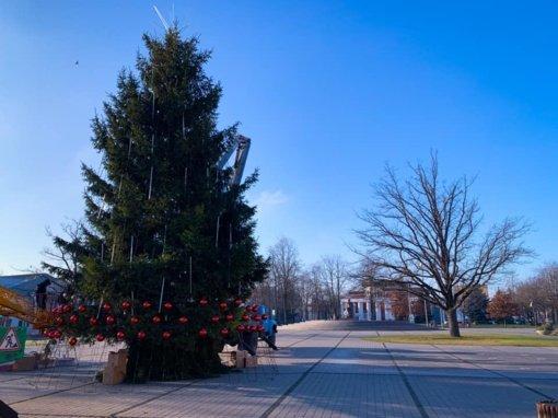 Kalėdinės žaliaskarės įžiebimas Vilkaviškyje keliasi į virtualią erdvę