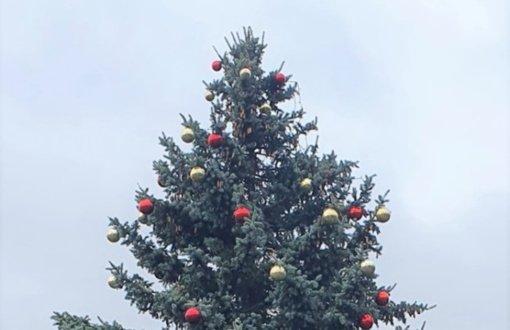 Trakų rajone sužibs Kalėdų eglės