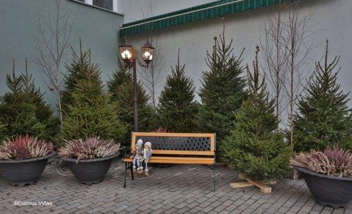 Ukmergė puošiasi artėjančioms Kalėdoms (vaizdo įrašas)