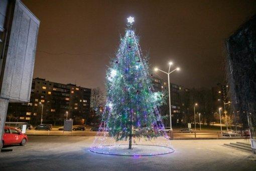 Vilniaus rajonai: nuo šventinių žirafų iki didžiausio Lietuvoje kalėdinio vainiko