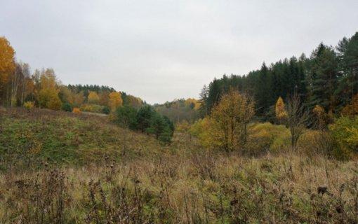 """Europos ekologiniam tinklui """"Natura 2000"""" Lietuvoje priskirti dar devyni draustiniai"""