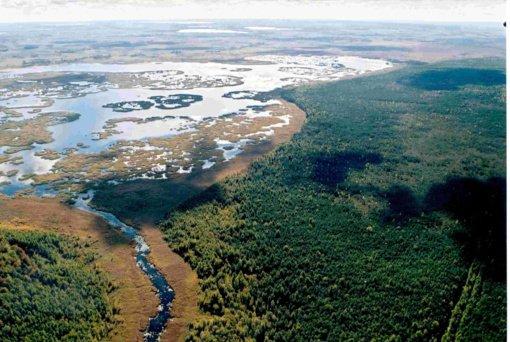 Siūloma atsisakyti mėgėjų žvejybos Žuvinto gamtiniame rezervate