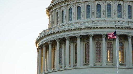 A. Skaisgirytė apie JAV: laiko demokratijos egzaminą