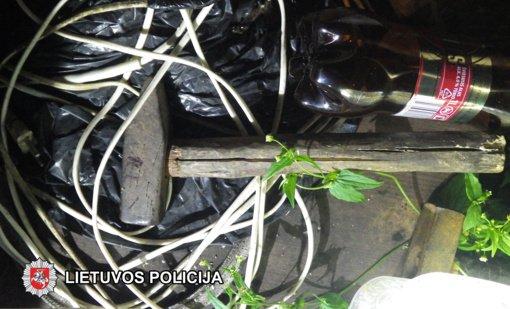 Bus teisiamas motinos sugyventinį plaktuku mirtinai uždaužęs Gratiškių kaimo gyventojas