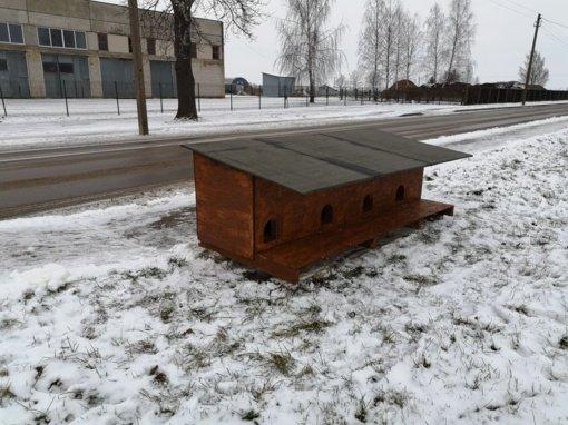Jurbarke įrengta papildoma bešeimininkių kačių šėrimo vieta