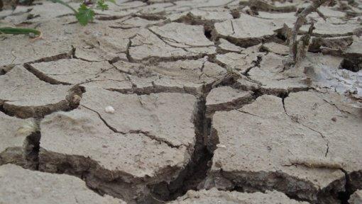 Gvatemalą supurtė 6,1 balo žemės drebėjimas