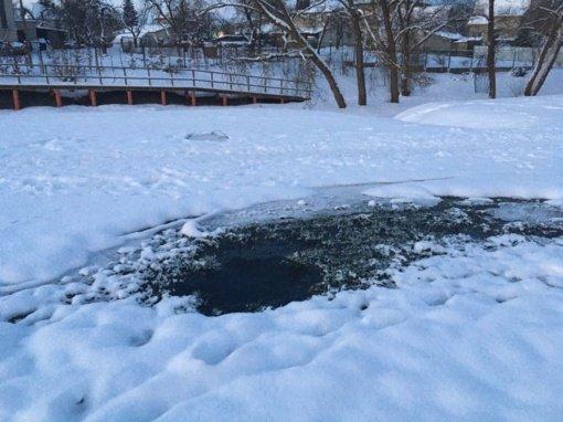 Vanduo išskirtiniame Kauno rajono parke neužšalo net per arktinius šalčius