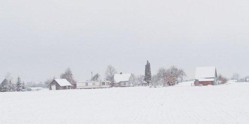 Vienkiemių gyventojai skęsta sniege