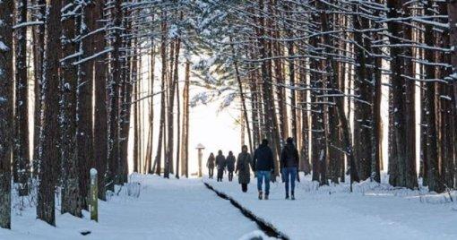 Olando Kepure grožėtis gali tik Klaipėdos rajono gyventojai