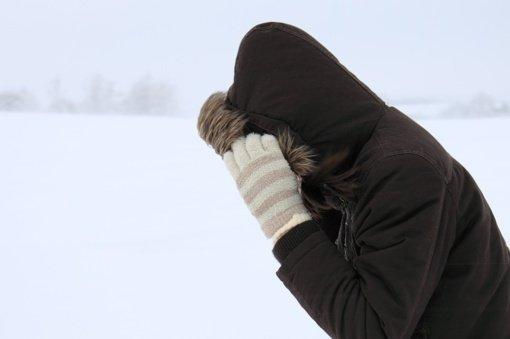 Antradienį Lietuvoje siautės pūgos, vėliau atkeliaus šaltis