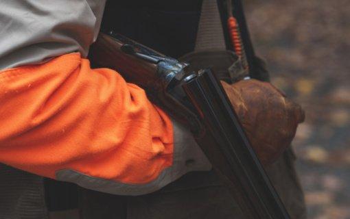 Kaišiadorių rajone sulaikytas neteisėtai 2 elnius sumedžiojęs vyras