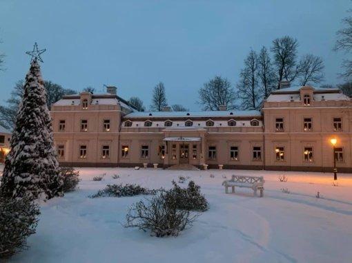 Zyplių dvaro parke dėl gausaus sniego nulūžo apie 70 medžių