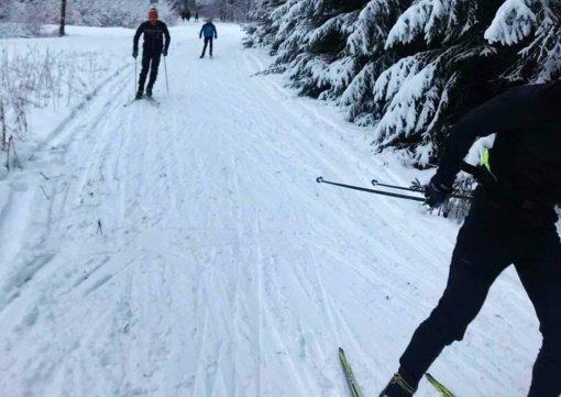 Sporto entuziastai prašo pasaugoti slidžių trasą Salduvės parke
