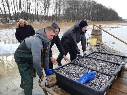 Stintelių žvejyba Lūšių ežere – kultūros paveldo vertybė