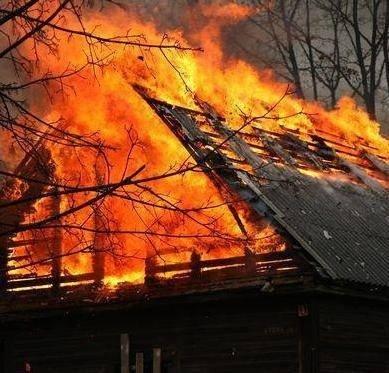 Rašimėlių kaime gaisro liepsnose žuvo 17 naminių gyvūnų