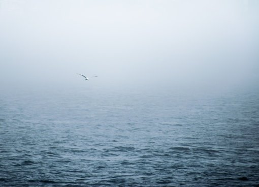 Ramiajame vandenyne iš laivo iškritęs lietuvis jūrininkas išgelbėtas po 16 valandų
