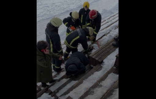 Tykantis pavojus Kauno amfiteatre: ugniagesiai moterį vadavo pasitelkę grandininį pjūklą