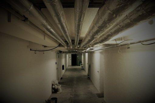 Draudikai: namų rūsiai ir terasos jau skęsta