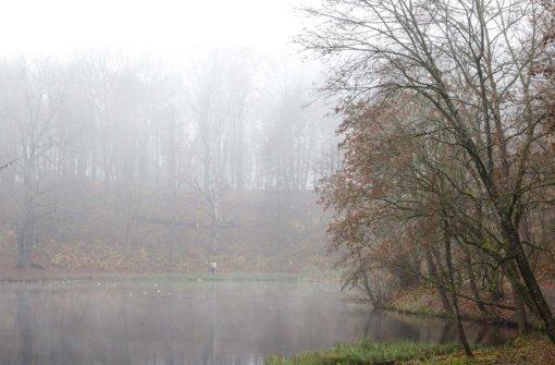Fiksuojama padidėjusi oro tarša