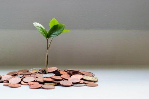 Kaip pritraukti pinigus ir sėkmę į namus pagal Feng Shui