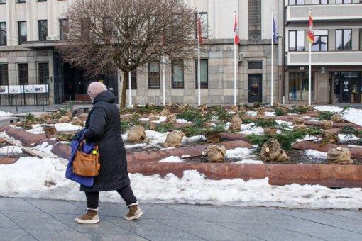 Vaizdas prie Kauno savivaldybės moterį apstulbino: neturiu žodžių